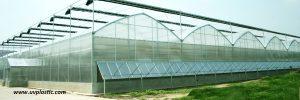 8mm Polycarbonat Dachplatten